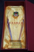 Outstanding CPPCC members trophy